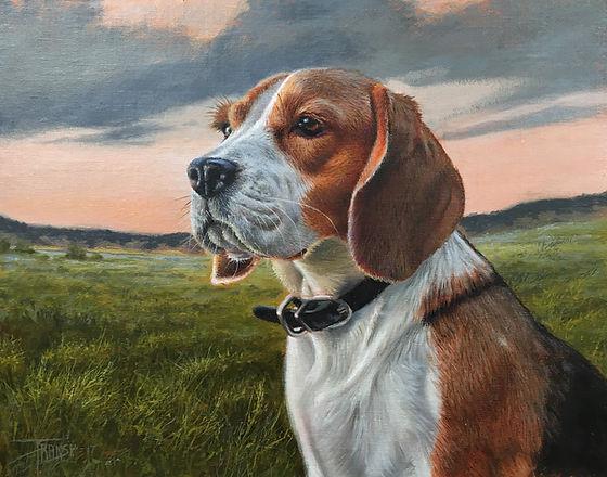 Mort the Beagle FA.jpg