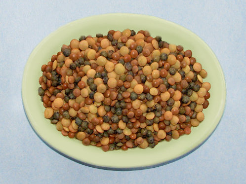 Crunchy Lentil Feast Salad Mix