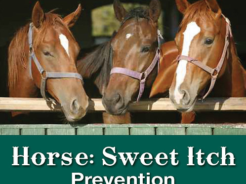 Horse Sweet Itch Prevention