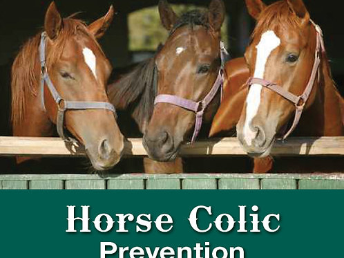 Horse Colic Prevention
