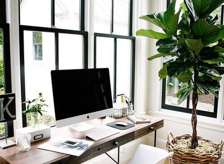 Tiempos de Home Office