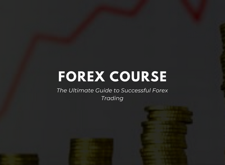 The Ultimate Guide to Successful Forex Trading [FOREX COURSE]