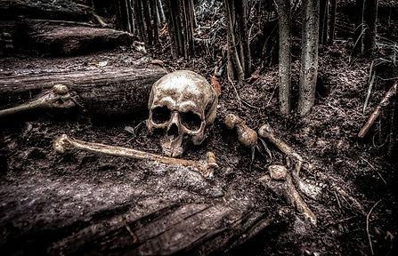 skull-2525192_640.jpg
