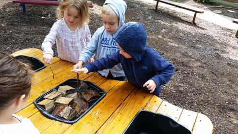 Preschoolers Exploring The Outdoors