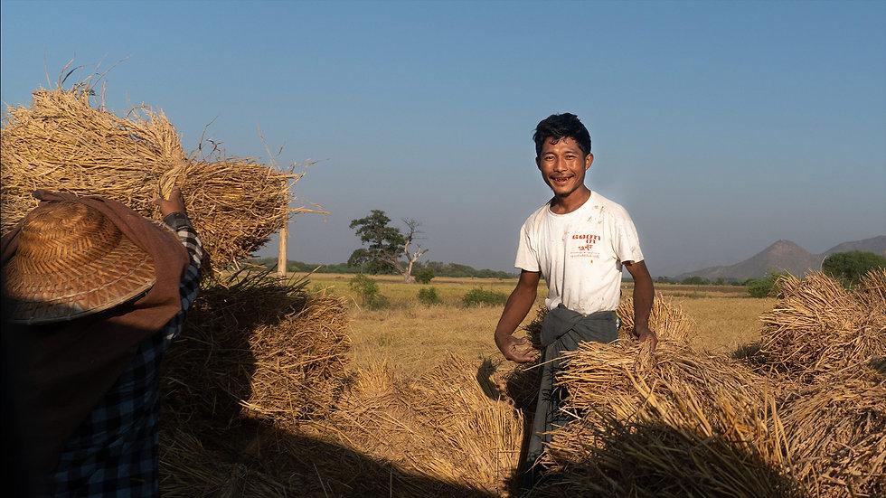 farmer-smiling.jpg