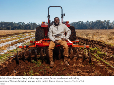 Two Biden Priorities, Climate and Inequality, Meet on Black-Owned Farms