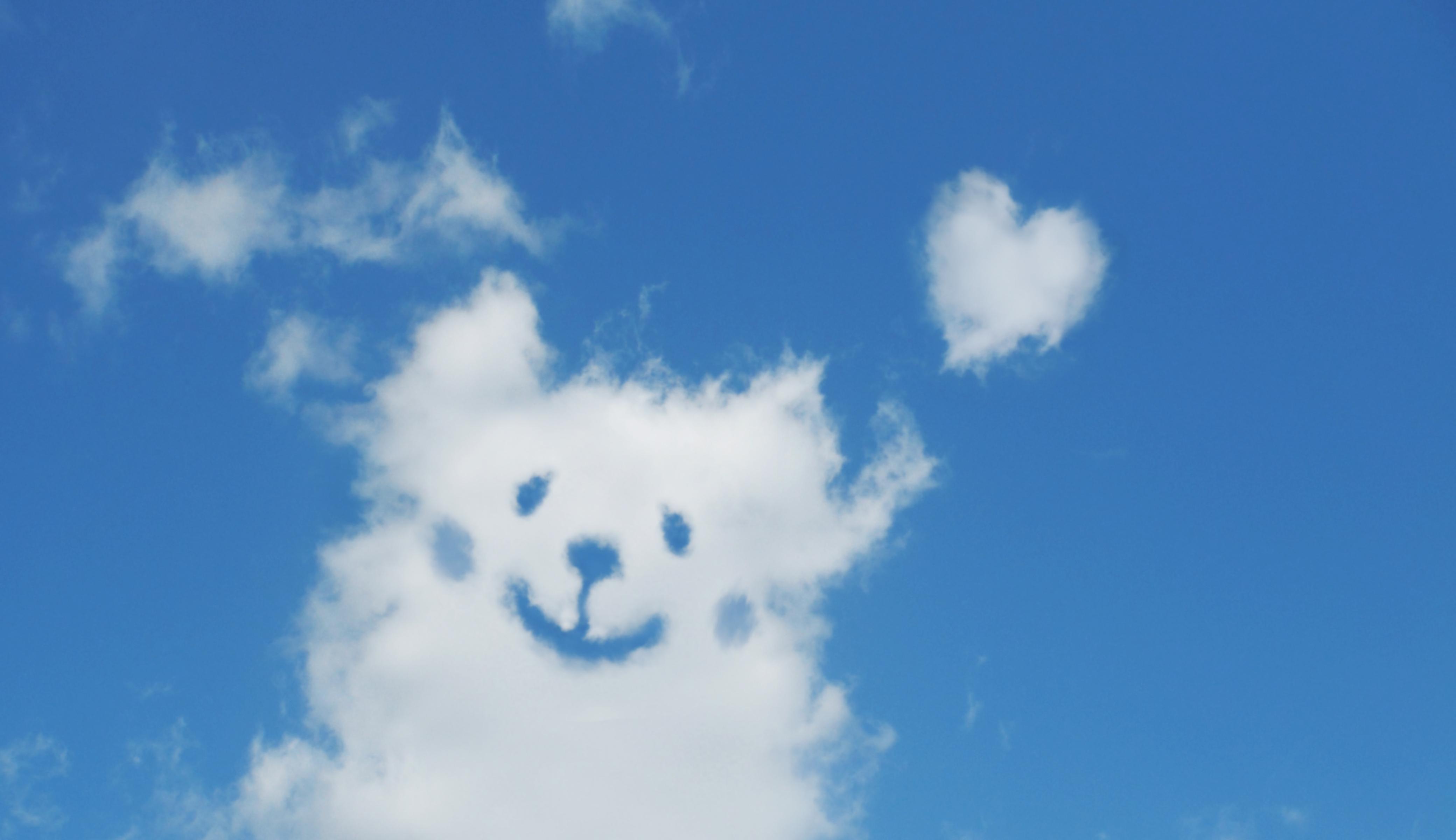 背景(犬雲)