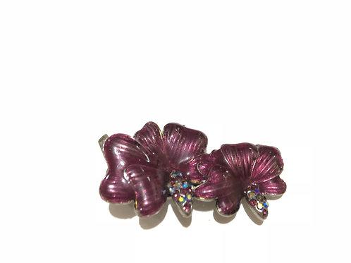 Mini bico de pato orquídea