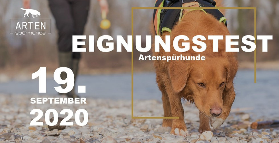 Eignungstest_edited.jpg
