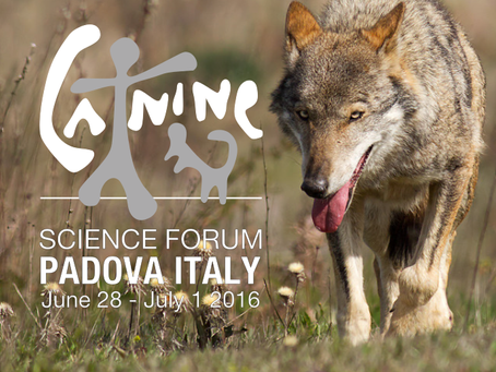 Canine Science Forum 2016