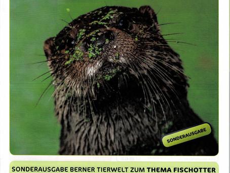 Berner Tierwelt