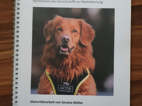 Maturaarbeit über Artenspürhunde