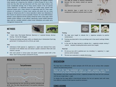 Artenspürhunde Schweiz mit Poster an der GfÖ-Tagung vertreten