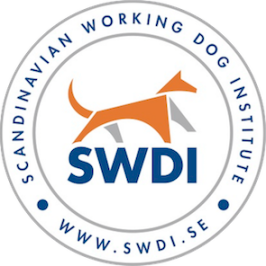 SWDI - International scent detection or tracking camp