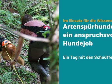 Blog-Artikel vom Tag der Artenvielfalt