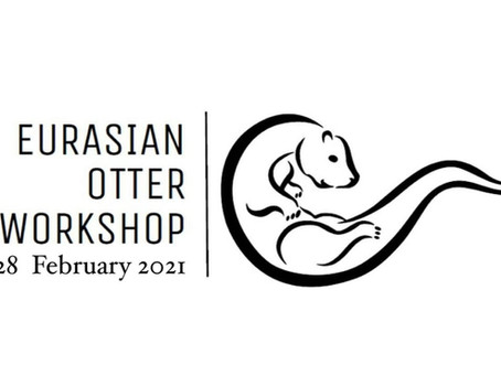 Eurasian Otter Workshop