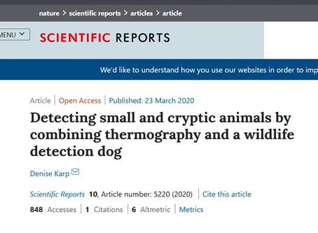 Publikation über den Junghasenspürhund in Scientific Reports!