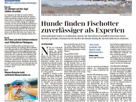 Die Fischotter-Studie in der Presse