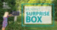 MonthlySurpriseBox.jpg