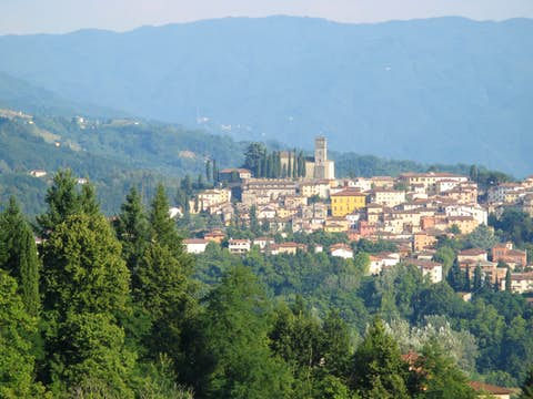Barga large.jpg