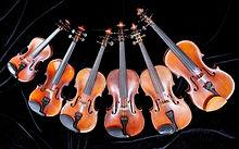 photo famille violon.jpg