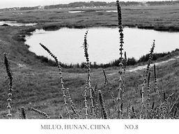 MILUO 8.jpg
