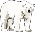 Art-polar-bear-clipart-clipart-kid.png
