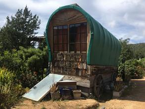 The eco-wagon
