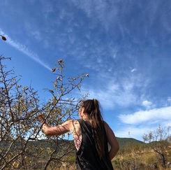 Greta is picking Almond