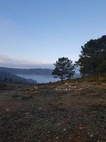 Morning view from Casita Verde Granada
