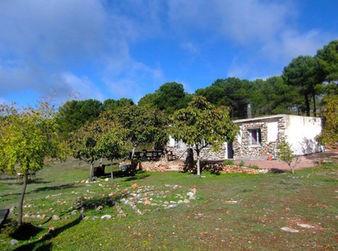Casita Verde House