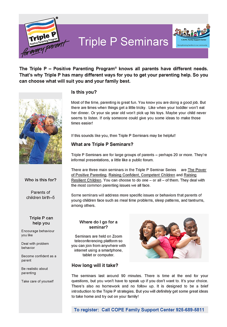 Triple P Seminars Flyer.png