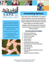 Counseling Options Flyer (1).jpg
