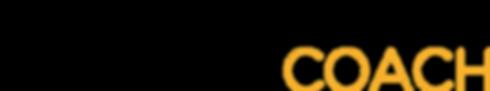 saul serna logo.png