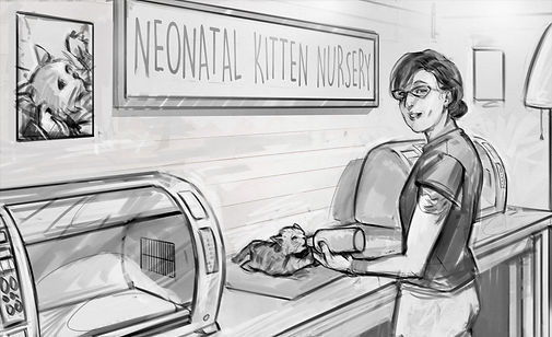 Kitten_Sketches_2_C2 (1).jpg