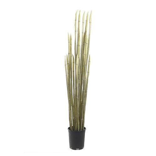 Πλαστικό φυτό