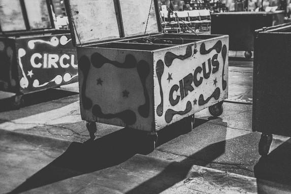 2019_05_Circus_Vargas-96.jpg