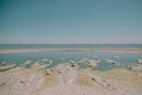 Saltan_Sea_July18-66.jpg