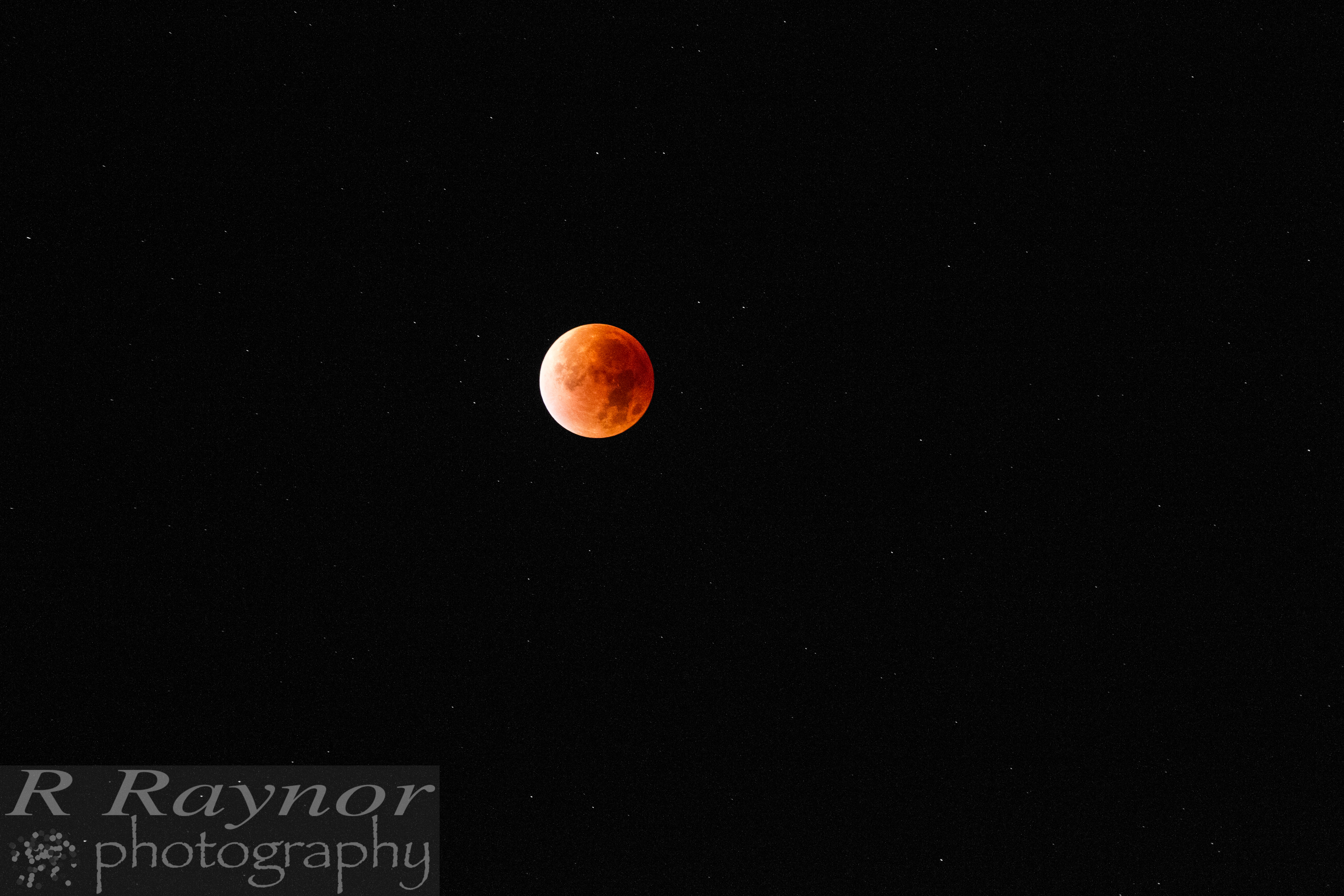 First_20150928_RRaynor0020