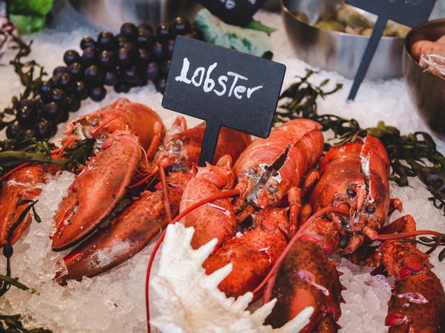 website photo - lobster on ice.jpg