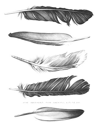 Five Feathers, Five Dreams