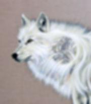 WARRIOR WOLF detail.jpg