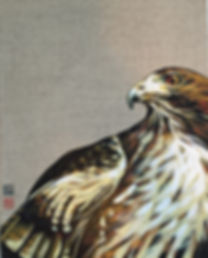 Red Tailed Hawk on Linen