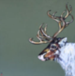 The Crossing _ Caribou