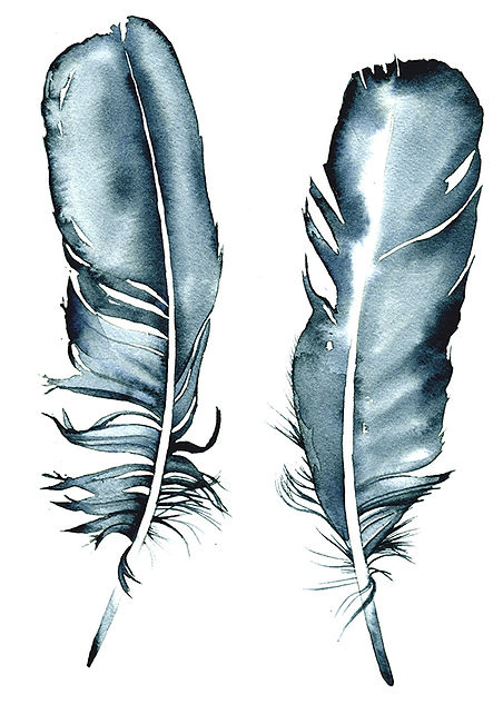 The Water Feathers