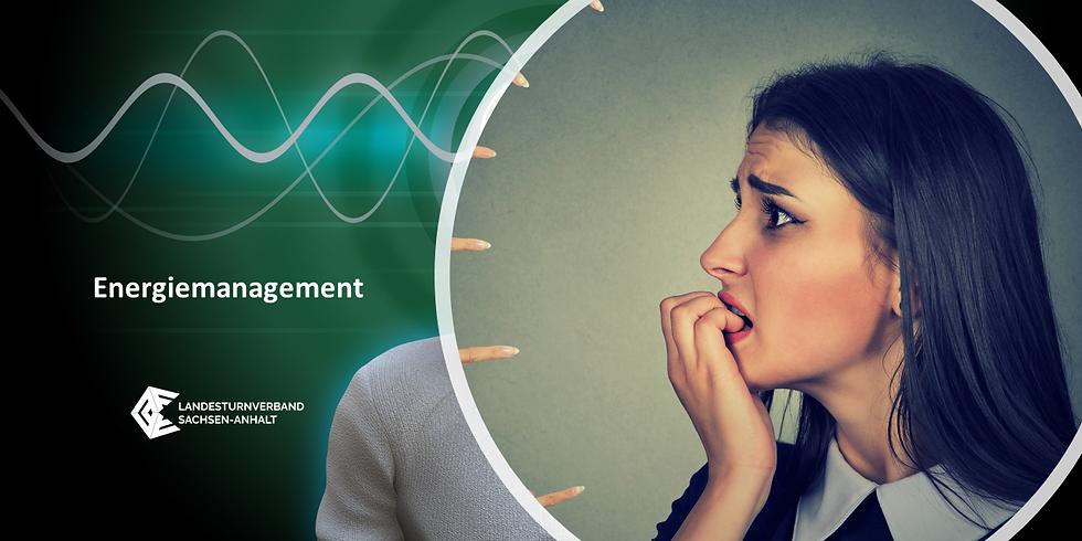 "WS 2133 ""Energiemanagement"""