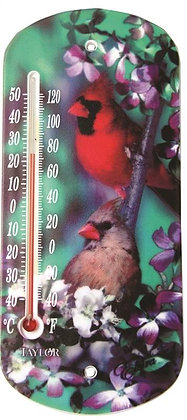 Taylor 5204 Cardinal Thermometer
