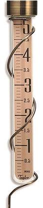 Taylor 484BZN Rain Gauge, 5 in