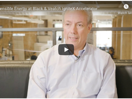 Three Rules for Engaging with Goliaths: Lessons from Black & Veatch's IgniteX Accelerator Program