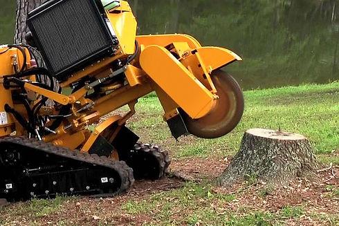 3-stump-grind.jpg